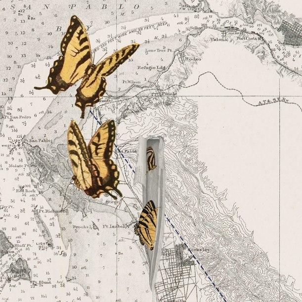 flyingbutterflies