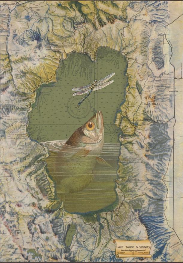 otm-fishing