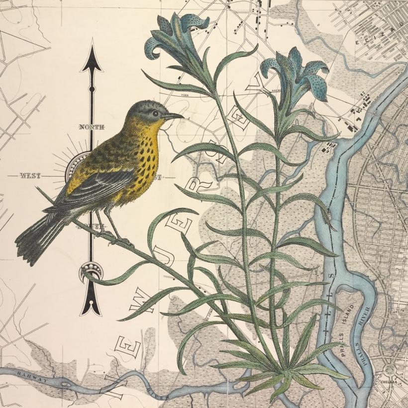 otm-birdandflower