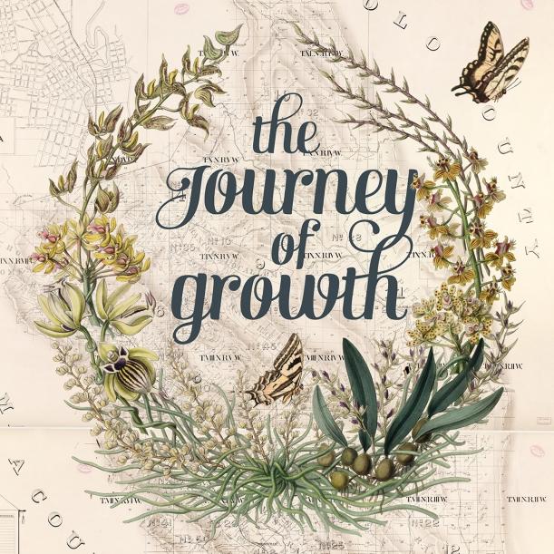 otm-growth